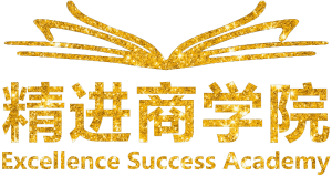 Google Ads Services for Excellenc Success Academy