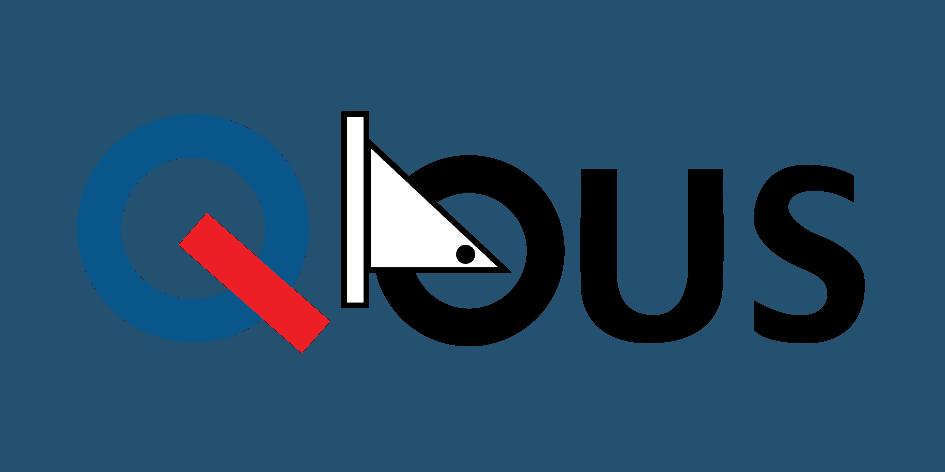 QBUS Website SEO Services